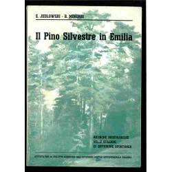 Il Pino Silvestre in Emilia