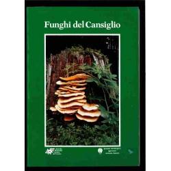 Funghi del Cansiglio
